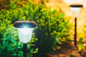 What to Look for in the Best Outdoor Solar Lights